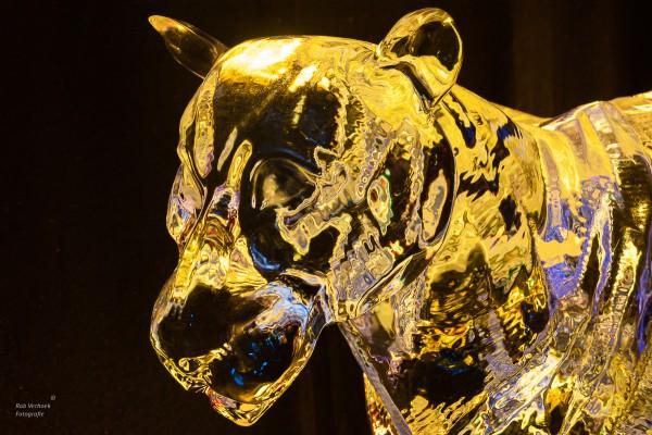 Rob Verhoek Fotografie, IJssculpturen festival Zwolle 2014