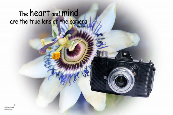 Rob Verhoek Fotografie Papendrecht heart and mind Agfa click